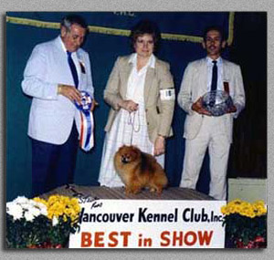 Sunny, Best in Show, Vancouver Kennel Club